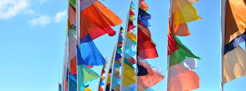 Photo of brightly coloured flags taken at Hubbub festival