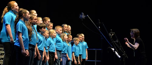 Saltash Singers performing at the Plymouth Pavilions